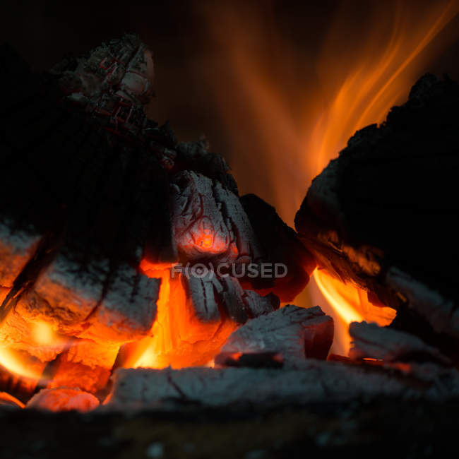 Close-up view of logs burning on a fire — Stock Photo