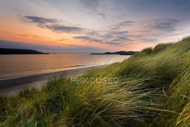 Vista panorámica de larga hierba en la bahía de Oldshoremore, Durness, Escocia - foto de stock