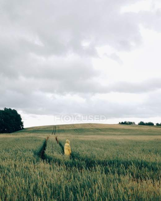 Back view of Woman standing in wheat field at cloudy day — Stock Photo