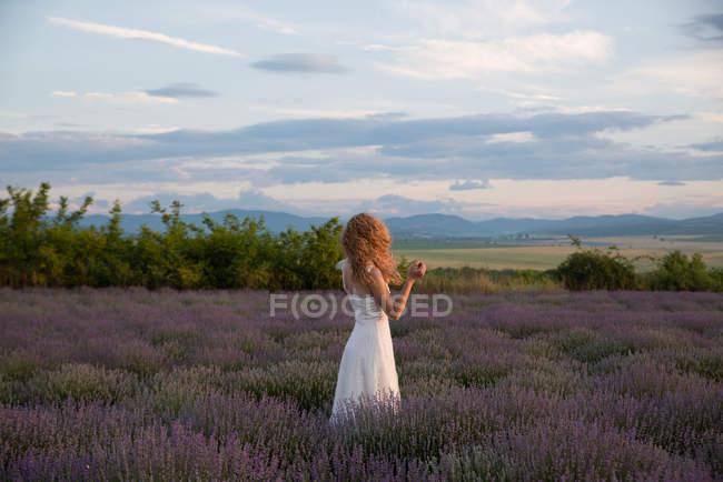 Mulher vestindo vestido branco em pé em um campo de lavanda — Fotografia de Stock