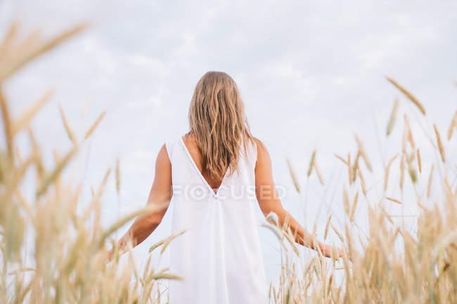 Vista posteriore della donna in piedi nel campo di grano — Foto stock