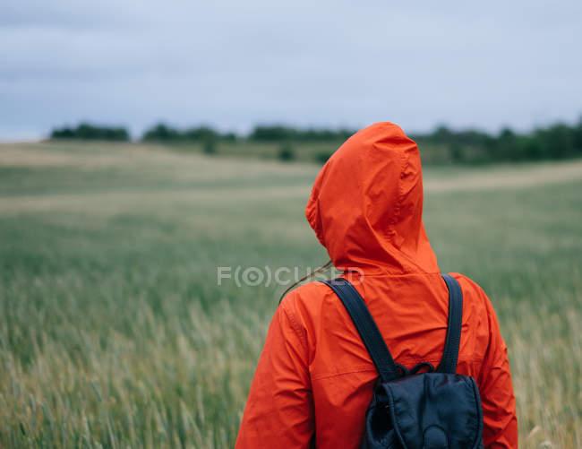 Vista traseira da mulher em pé de gabardine vermelho em campo verde — Fotografia de Stock