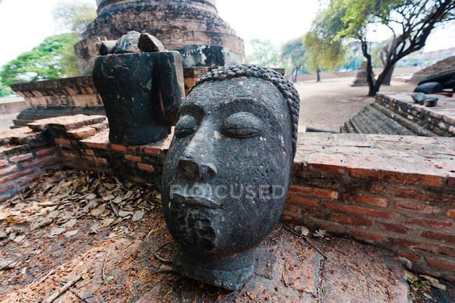 Thailand, Ayutthaya, Close up of head of Buddha statue — Stock Photo