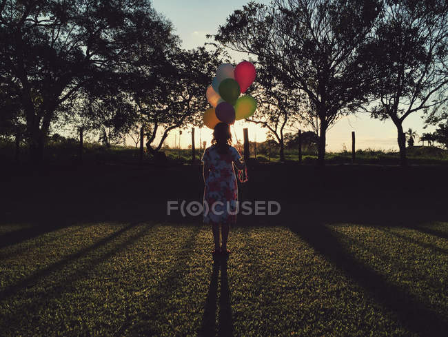 Silhouette of a girl holding bunch of balloons — Stock Photo