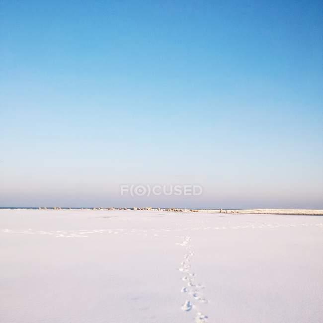 Vista panoramica sulla spiaggia innevata, Mar Nero, Romania — Foto stock