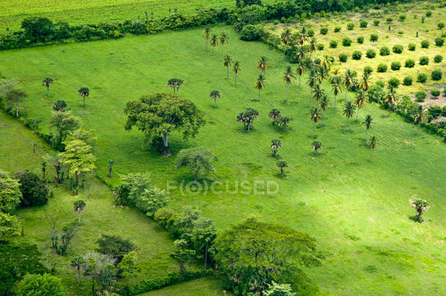 Aerial view of fields in Chiapas, Mexico — Stock Photo
