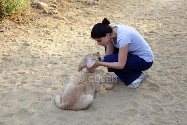 Женщина играет с золотистым ретривером щенка в песке — стоковое фото