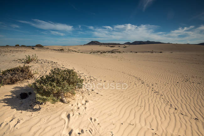 Scenic view of sand dunes under cloudy sky, Fuerteventura, Canary Islands, Spain, — Stock Photo