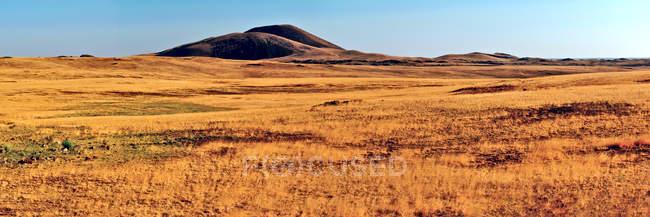 Живописный вид на двух холмах и лугах вблизи Спрингервиль, Аризона, США — стоковое фото