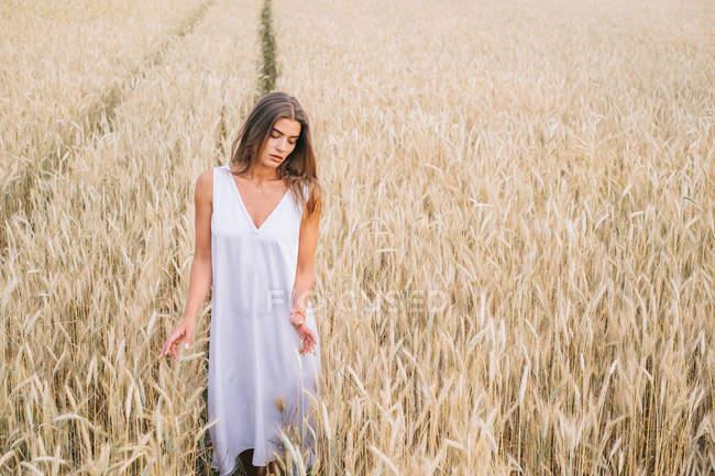 Sensual caucasian woman walking through wheat field — Stock Photo