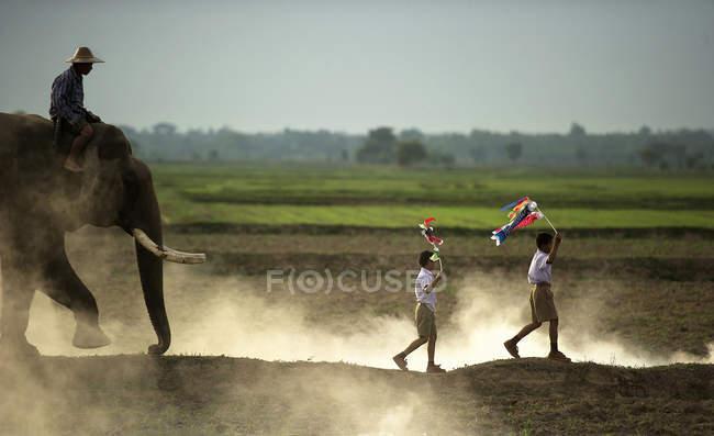 Zwei jungen mit Koi Fahnen mit Mann auf Elefanten, Thailand — Stockfoto