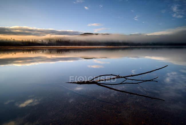 Reino Unido, Escocia, Reflejo del cielo y la rama en Loch Laggan - foto de stock