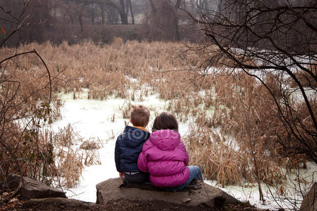 Rear view of brother and sister sitting on rock at winter forest — Stock Photo
