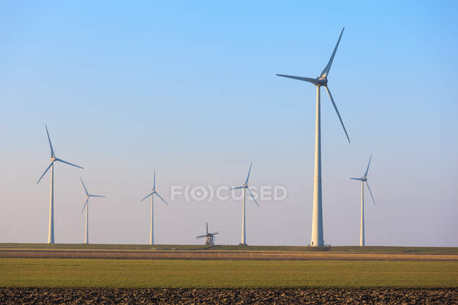 Rows of wind turbines and an old traditional windmill, Eemshaven, Groningen, Netherlands — Stock Photo