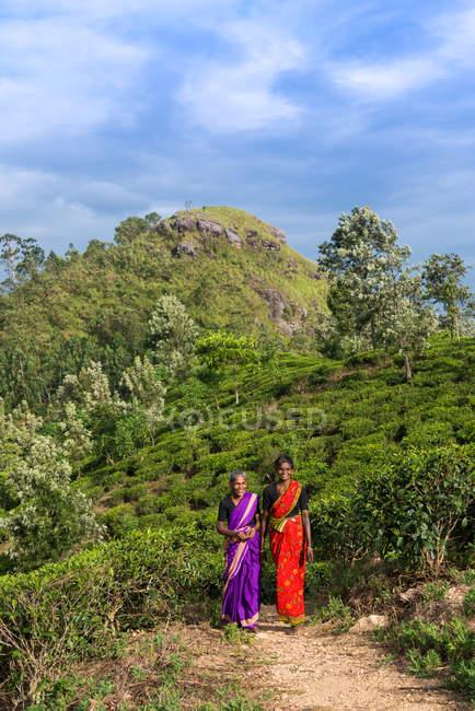 Ritratto di due donne che attraversano una piantagione di tè, Sri Lanka — Foto stock