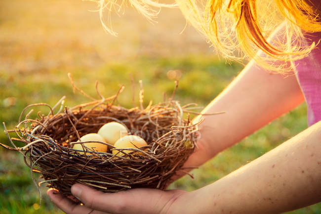 Обрезанное изображение девушка держит птица гнезда с яйцами — стоковое фото
