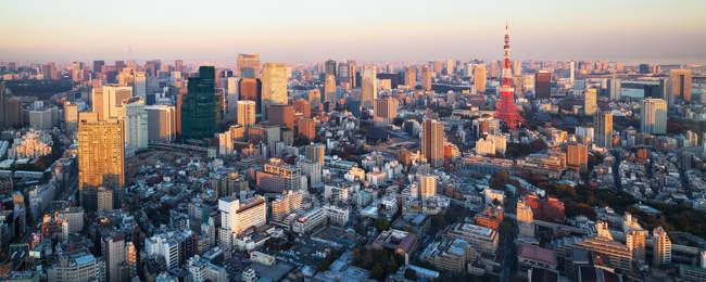 Мальовничий вид на горизонт з Tokyo Башта, Токіо, Японія — стокове фото