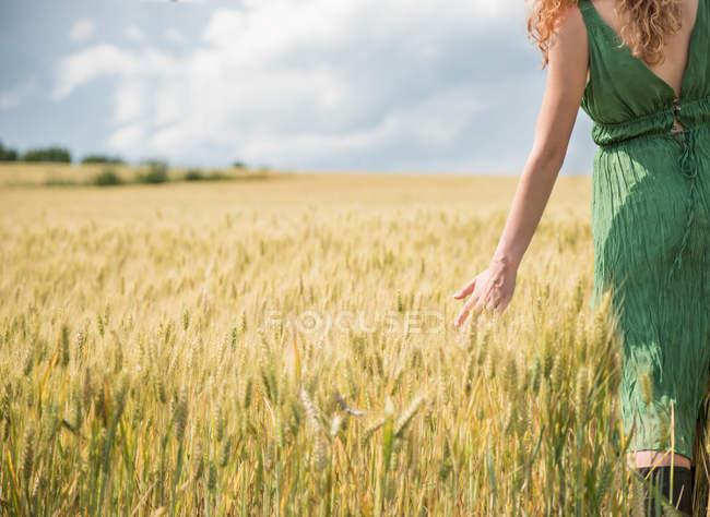 Immagine ritagliata di Donna che cammina attraverso il campo di grano — Foto stock