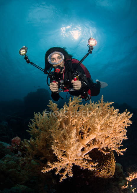 Hembra Scuba Diver fotografiando coral bajo el agua - foto de stock