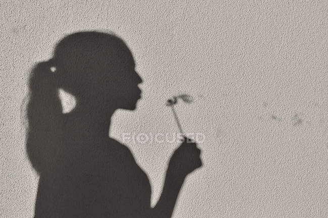 Shadow of girl blowing a dandelion clock — Stock Photo