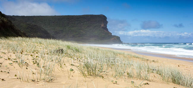 Vista panorámica de la hermosa playa, Wollongong, Nuevo Gales del sur, Australia - foto de stock