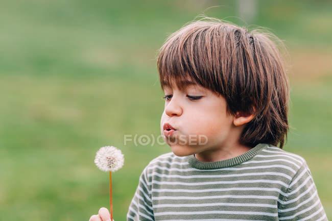 Close-up de Boy soprando dente-de-leão no campo — Fotografia de Stock