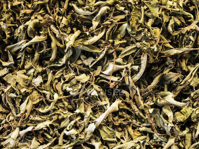 Gros plan de tisane sur le marché, fond — Photo de stock