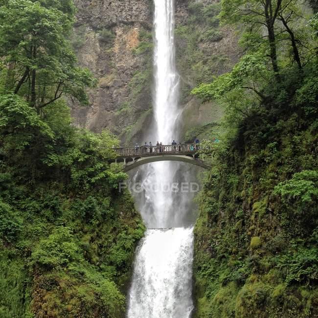 Majestic multnomah falls, Oregon, USA — Stock Photo