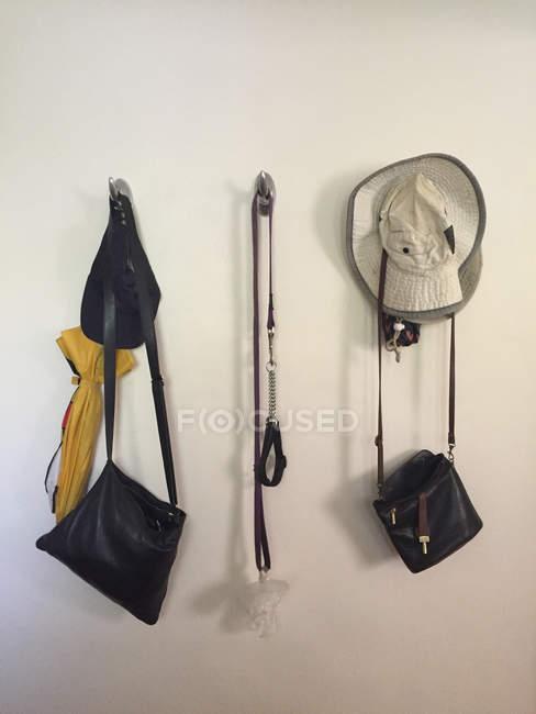 Сумки, шапки, парасолька, собаки комір і привести собаку висить на стіні — стокове фото