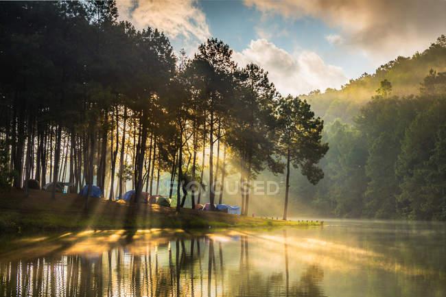 Tiendas de campaña en una orilla del río bordeada de árboles, Pang Ung, Tailandia - foto de stock