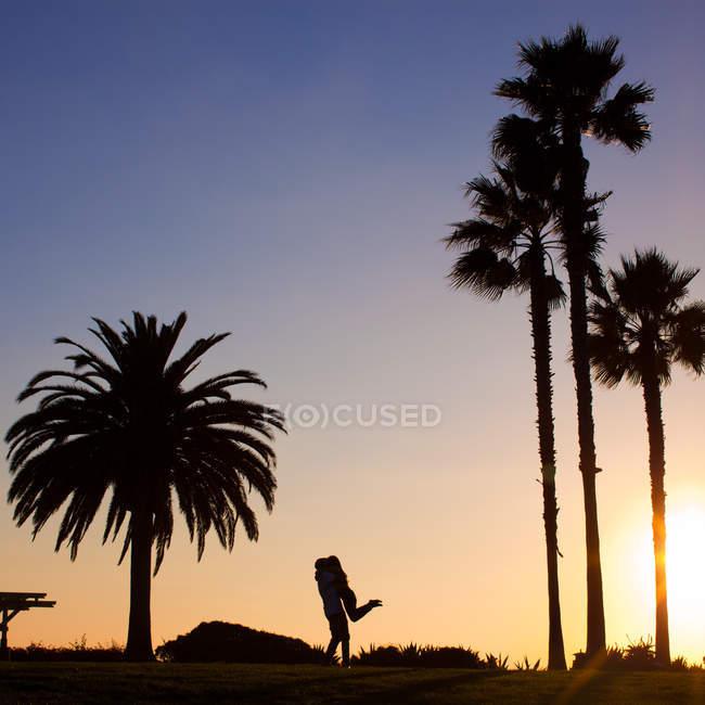 Silhouette of man lifting girlfriend beside palms — Stock Photo