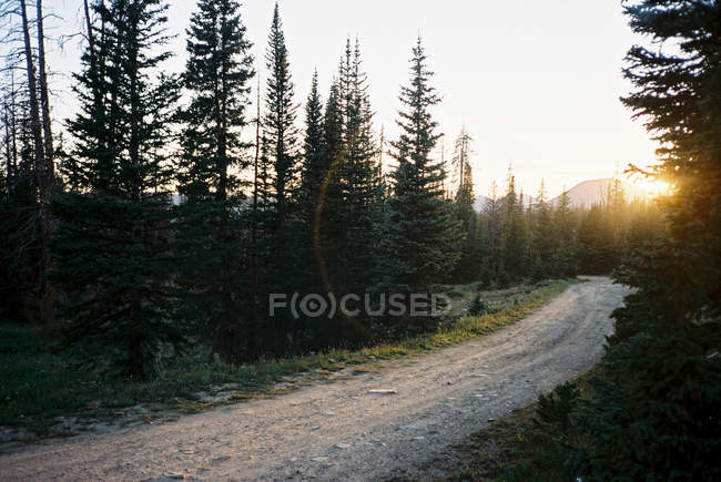 Scenic view of Road through High Uintas Wilderness area, utah, America, USA — Stock Photo