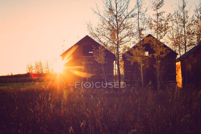 Three wooden huts in rural landscape scene, british columbia, Canada — Stock Photo