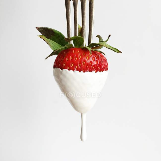 Strawberry dipped in cream on a fork, white background — Stock Photo
