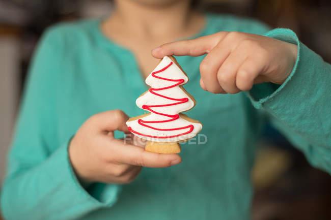 Recortar imagen de muchacho con una galleta de Navidad en forma de un árbol de Navidad - foto de stock