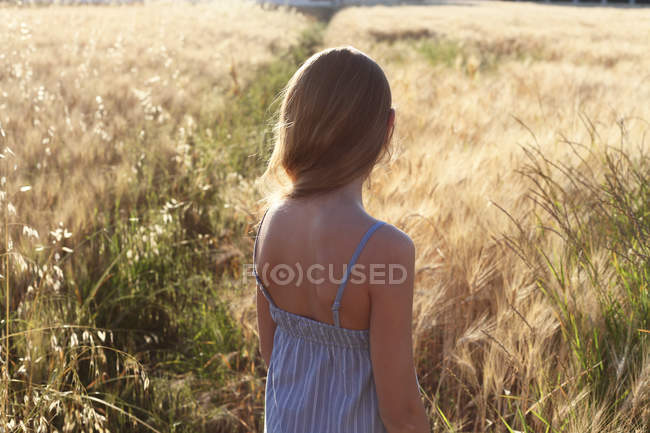 Rear view of a girl standing in a wheat field, italy — Stock Photo