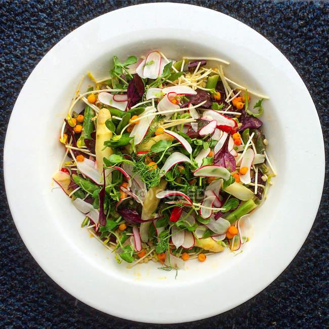 Салат зі спаржею і редьки в білий плита — стокове фото