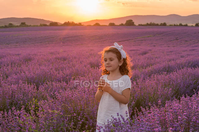 Portrait of a Girl standing in lavender field at sunset — Stock Photo
