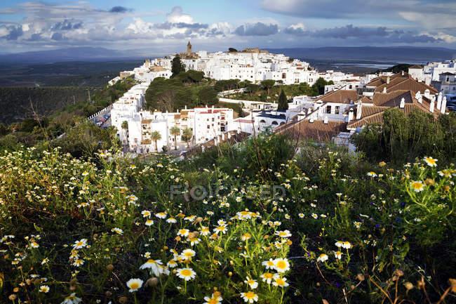 Vista panorámica del paisaje urbano con flores en primer plano, Vejer de la Frontera, Cádiz, Andalucía, España - foto de stock