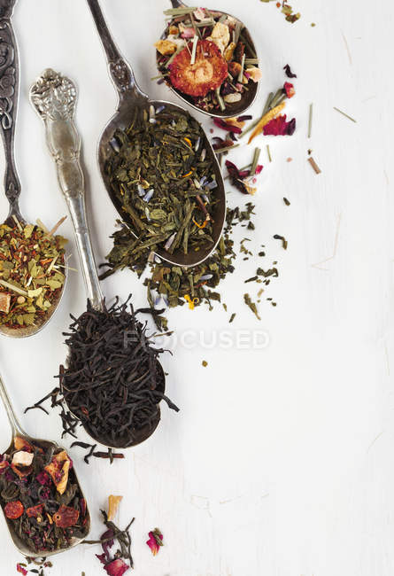 Different types of tea leaves in spoons — Stock Photo