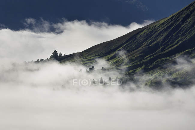 Scenic view of misty Kintamani, Pinggan, Bali, Indonesia — Stock Photo