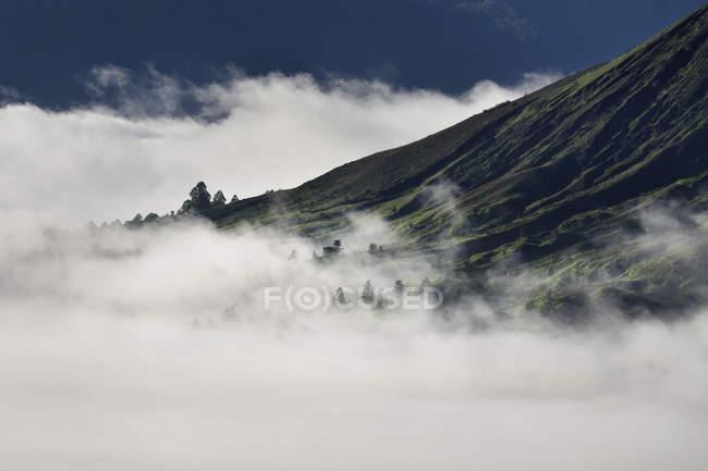 Vista panoramica della nebbiosa Kintamani, Pinggan, Bali, Indonesia — Foto stock