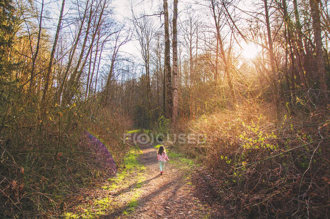 Rear view of girl running through the woods — Stock Photo