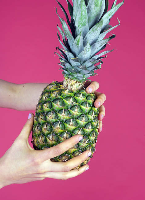 Cropped image of Woman holding pineapple against pink background — Stock Photo