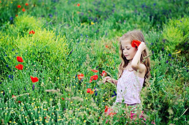 Menina caminhando através do campo de papoula florescente — Fotografia de Stock