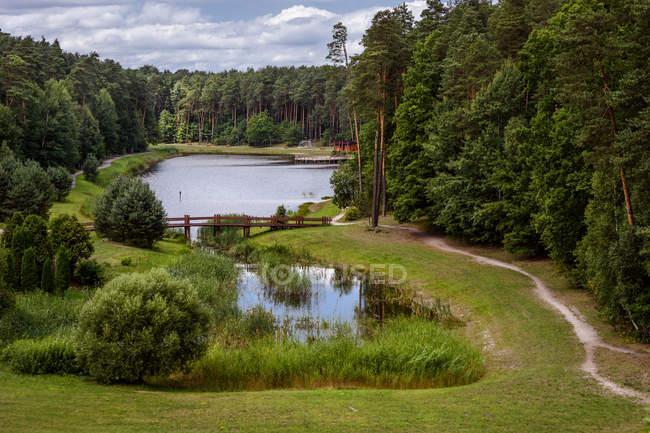 Vista panorámica del lago rodeado por árboles, Condado de Alytus, Lituania - foto de stock