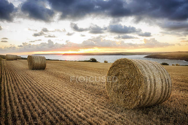 Scenic view of hay bales in a field at sunset, Cornwall, England, UK — Stock Photo