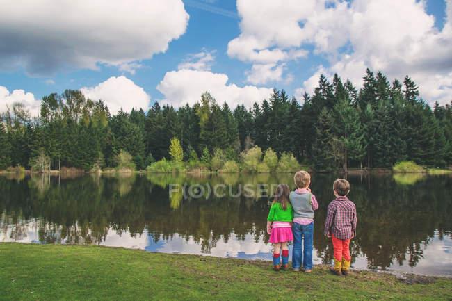 Vue arrière des enfants debout au bord du lac et regardant le reflet dans l'eau — Photo de stock