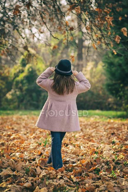 Vista posteriore di una ragazza in piedi in foglie d'autunno — Foto stock