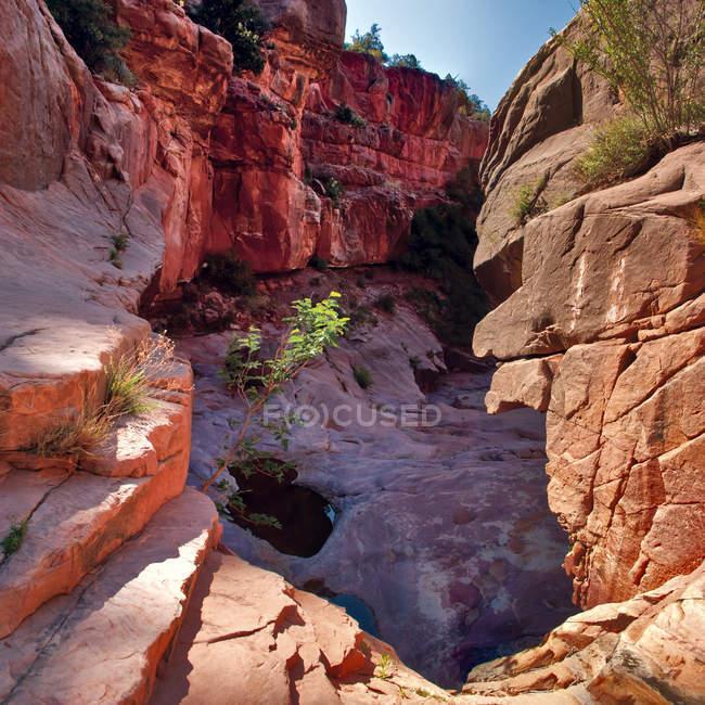 Vista panorâmica do fundo de Wilson Canyon, Sedona, Arizona, EUA — Fotografia de Stock